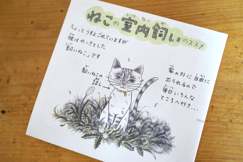 飼い猫に生涯を全うしてほしい『ねこの室内飼いのススメ』坂本千明さん